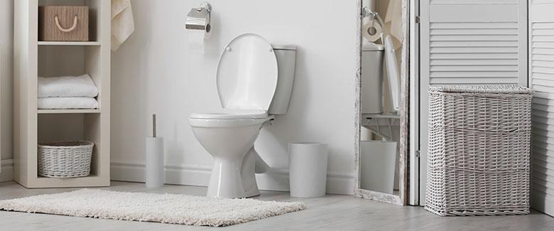 Toilet Installation Gainesville FL